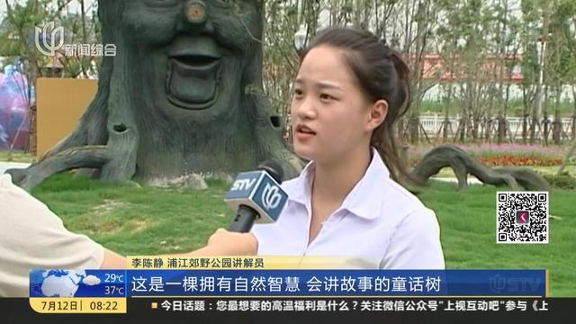 浦江郊野公园尚在施工 市民游园还需再等等
