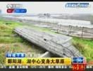 鄱阳湖:湖中心变身大草原