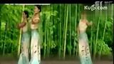 傣族舞蹈视频《月光下的凤尾竹》舞蹈教学视频.