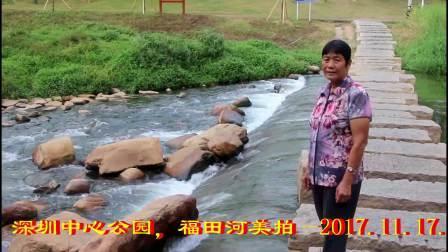深圳中心公园,福田河拍摄