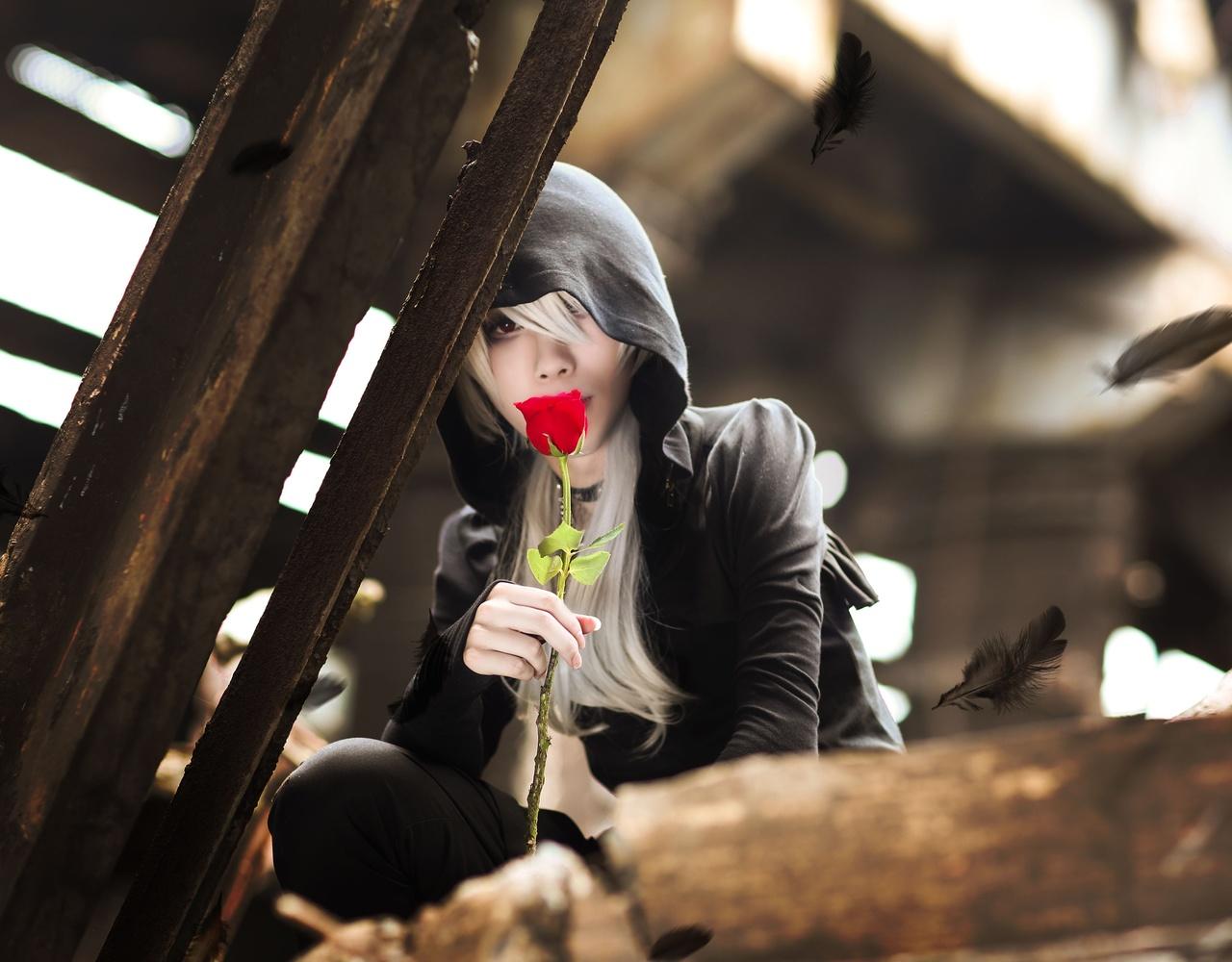 【千韵霗】红玫瑰