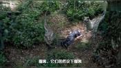 侏罗纪公园3:恐龙竟懂得设圈套,脑子够机灵的,这可要危险了!
