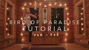 瑜伽教程,如何做到单抬腿