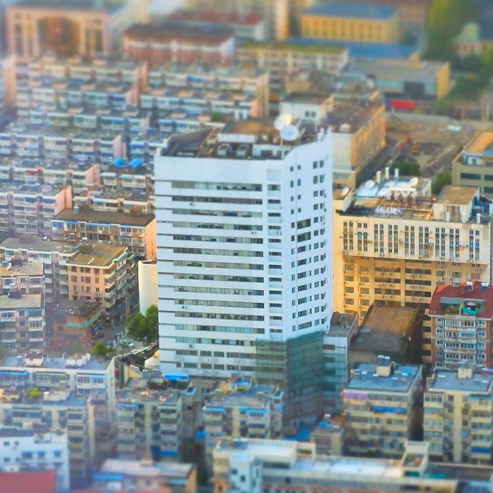 摄影:南京的8~10月