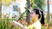 美女演唱《等风等雨不如等你》PK东方晴儿,柔情似水,飘逸好听!