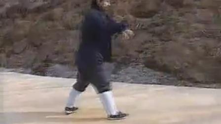 七星螳螂拳白猿偷桃