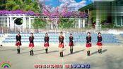 福建阿梅儿广场舞《雷山我的爱》团队表演教学