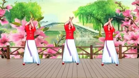 红领巾舞蝶广场舞:《梅花泪》编舞·段希帆