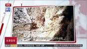 红外相机拍到黄河源地区野生雪豹活动照