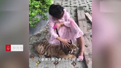 9岁女孩遛老虎