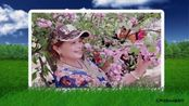 春天的微笑视频相册