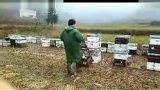 蜂群多功能升降车