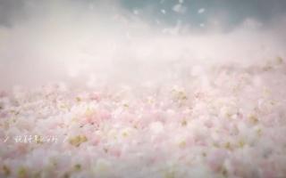 【胡歌×霍建华|吴磊×王俊凯】神仙眷侣和小徒弟的日常(胡霍/磊凯)