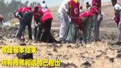 埃航坠机现场所有遗物已挖出,遇难者金也淘护照也被找到