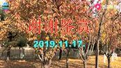笛子曲【柳花遇见好春风】C2调.