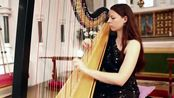 J.S. Bach - Toccata and Fugue in D Minor BWV 565 Amy Turk Harp