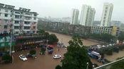 进入梅雨期,黄山大雨天气增多
