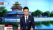 """北京大兴国际机场""""绿色升级"""" 机场用车100%新能源"""