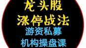 龙头战法一苇渡江红楼涨停金钱帝国高手篇股票课04讲-天下归一