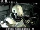 《机器纪元》曝先导预告 班德拉斯遭遇机器人版无人区