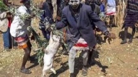 非洲妇女15孩被喂鳄鱼 万恶的风险迷信戕害生命
