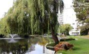 """英语口语视频教程-【跟Jim学英语】第二十四课英语口语自学""""The Park"""""""
