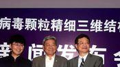 中国解析猪瘟病毒