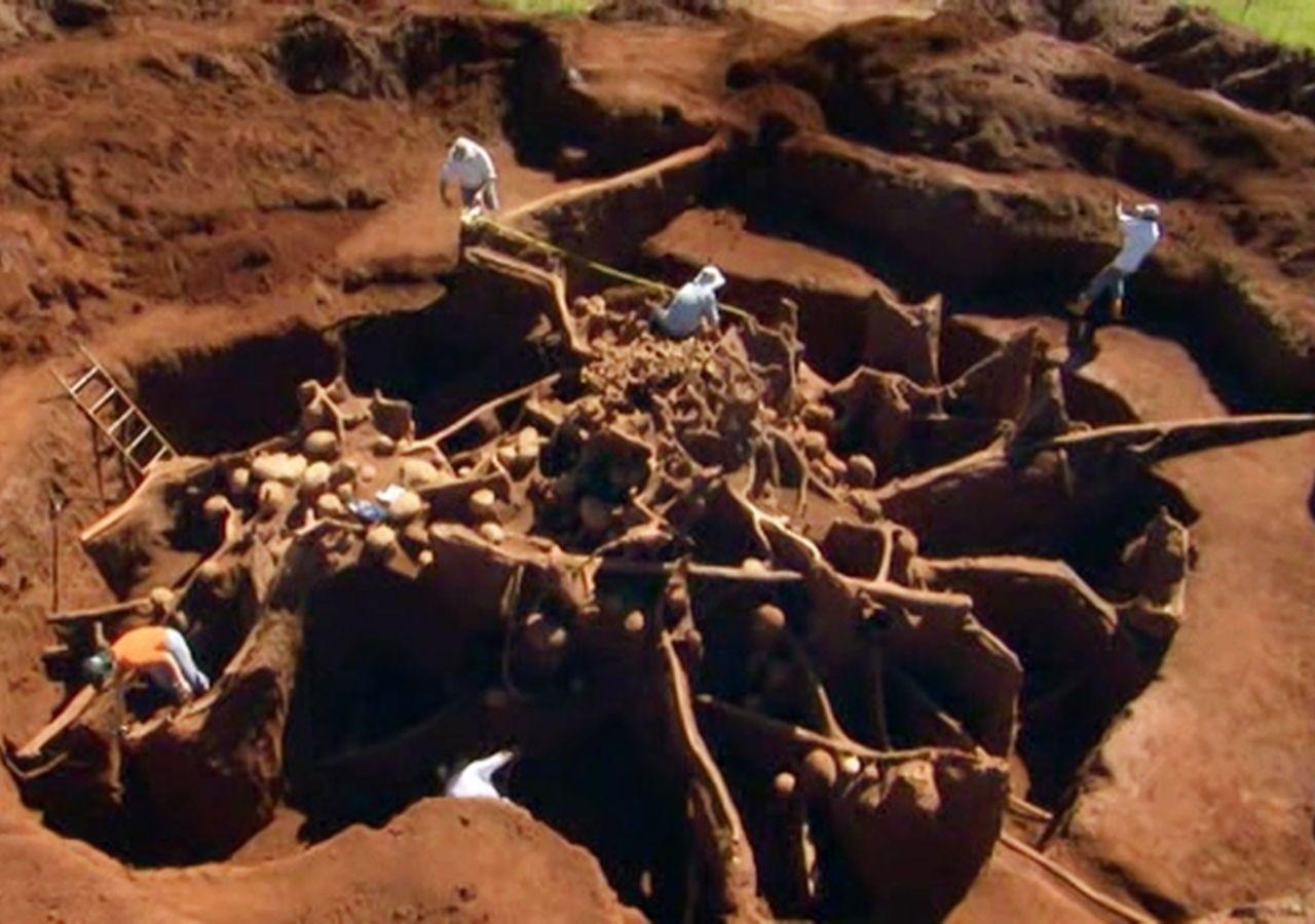 蚂蚁地下城!动物世界里的建筑奇观【寰球大百科261】