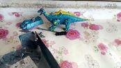 变形金刚玩具、恐龙