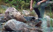 二更视频丨他把大自然搬家里,不出门欣赏山水