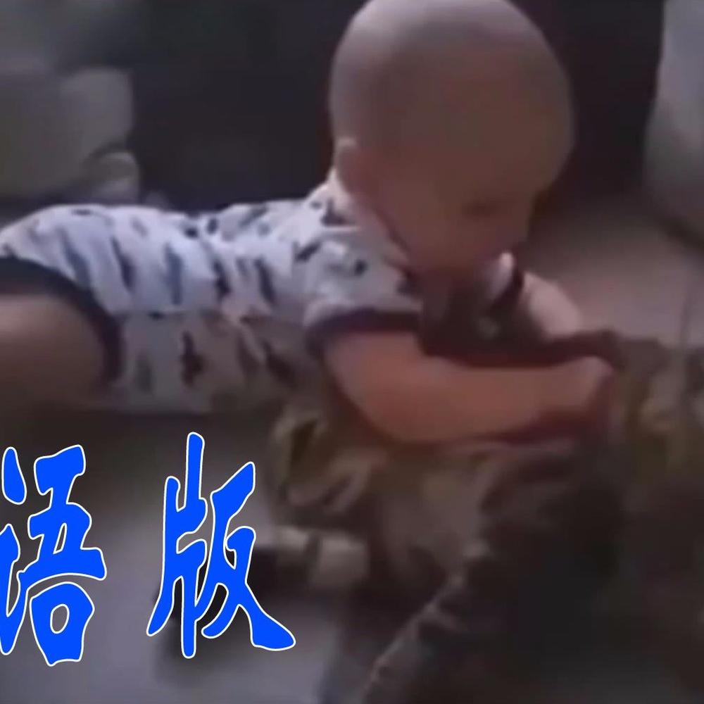【国语版】喵星人:长大了在和我打!!!