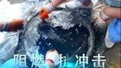 河北衡兴环保企业宣传片
