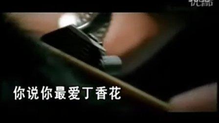 唐磊-丁香花