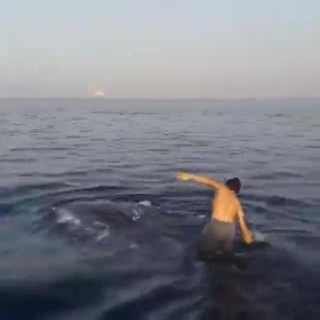 外国小哥在海上遇到鲸鱼直接站在鲸鱼背上