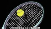网球王子 不二周助vs不二裕太