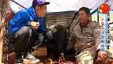 世界第一等20121226 杨子仪 青海_标清