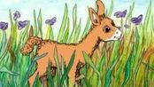 英语启蒙故事《你的妈妈是驼羊吗》
