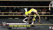 WWE:比安卡·贝莱尔 vs 妮琪·克洛斯
