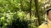 越剧《孟丽君》君臣游园,王文娟、金美芳唱的真好听!