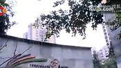 重庆女子24楼赏雪 忽一声惨叫随护栏跌落身亡