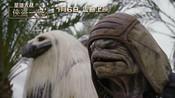《星球大战外传:侠盗一号》星际生物特辑-电影资讯 (一)-微影视排行榜
