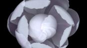 【艺术+技术】创造性艺术编程展示   Processing p5.js