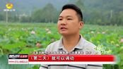 永州宁远:九嶷山下的采莲队