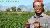 《我是农民工》演唱