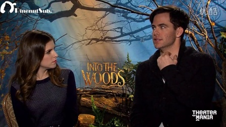 【Pinenuts字幕组】Anna Kendrick and Chris Pine Chat On the Steps of the Palace f