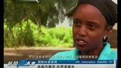 南苏丹难民 吃野草维生 新闻直通车 资讯卫视