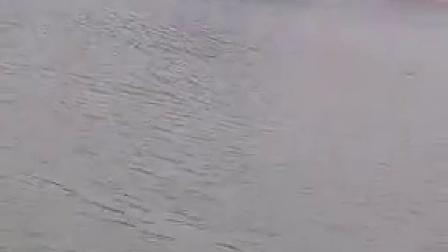 龙腾虎跃冬泳队
