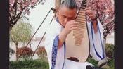 琵琶大师弹奏《春江花月夜》,高级的琴声,非常有感觉啊!