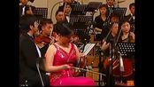 二胡独奏赛马教学视频学二胡的好处中国民乐好声音-完整版二胡独奏梁祝_62