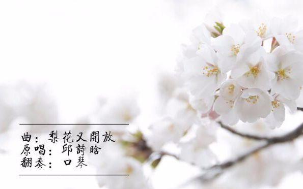 【口琴】梨花又开放 新春快乐